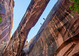 Canyoneering in Moab