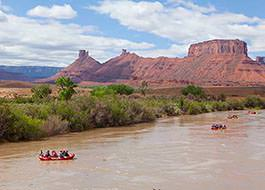 Colorado River Morning Half Day Rafting Trip
