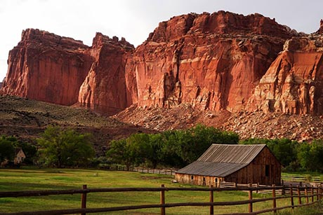 Capitol Reef National Park & Beyond